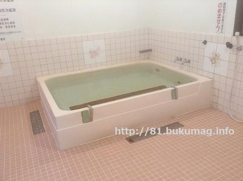 アイリスパーク,奥熊野温泉,女神の湯,和歌山県中辺路の秘境温泉