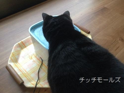 ペット給水器