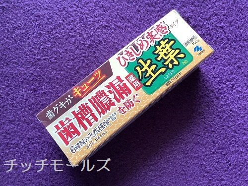 ひきしめ生葉(しょうよう) 歯槽膿漏を防ぐ 薬用ハミガキ